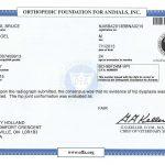OFA Hip Certificate